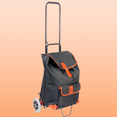 Domestic Shopping Trolley With Sack