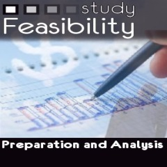 7 . Economic Feasibility Studies