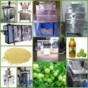 Amla Processing Equipments