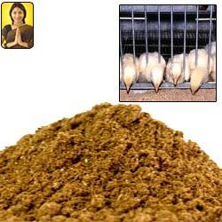 Fish Meal And Poultry Feeds