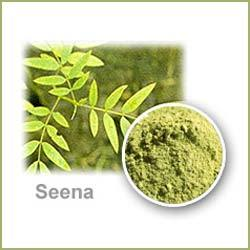 Senna Leaves / Sonamukhi