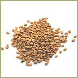 Fenugreek Seeds / Methi