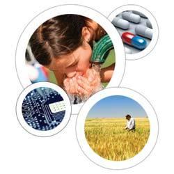 Basic Chemicals & Inorganic Salts