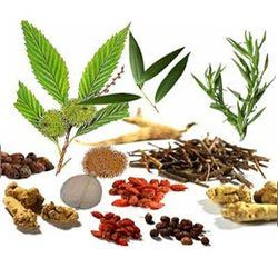 Herbal Products Herbal Raw Material Manufacturer From