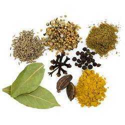 Indian Spice in Ahmedabad, Gujarat | spice Suppliers, Dealers ...