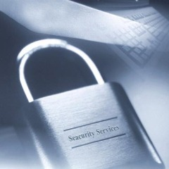 Security Services Providers