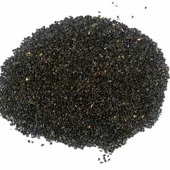 Spices Tukmaria Seed Exporter From Manasa
