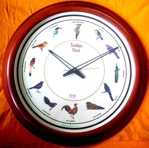 Singing Birds Wall Clock Singing Bird Clock Manufacturer