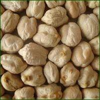 Gram Seed - Amar 4 Kabuli (Dollar)