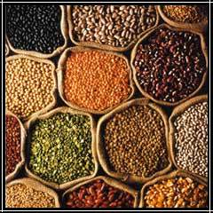 Agro Food Products