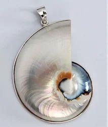 Shell pendant seep ka jhumka manufacturers suppliers nautilous shell pendant vp27 aloadofball Choice Image