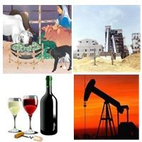 Agriculture Cattle Feed / Sugar / Distillery Wine & Brewery Food / Edible Oil